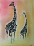 Giraffes on a Savannah